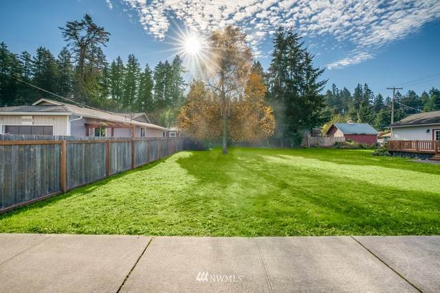125 Central Avenue W, Tenino, WA 98589 (#1683337) :: Commencement Bay Brokers