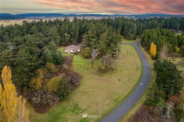 41 Cougar Lane, San Juan Island, WA 98250 (#1683835) :: Keller Williams Realty