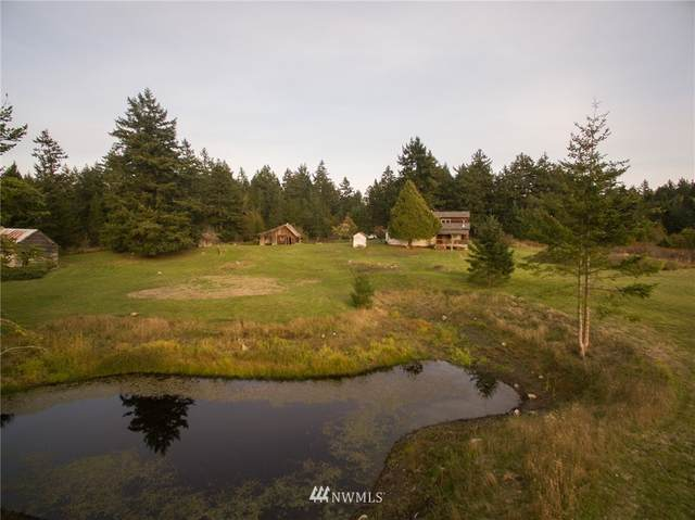 245 Hidden Meadows Lane, Friday Harbor, WA 98250 (#1683844) :: The Robinett Group
