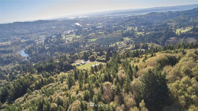 0 Paananen Road, Woodland, WA 98674 (#1684479) :: NW Home Experts