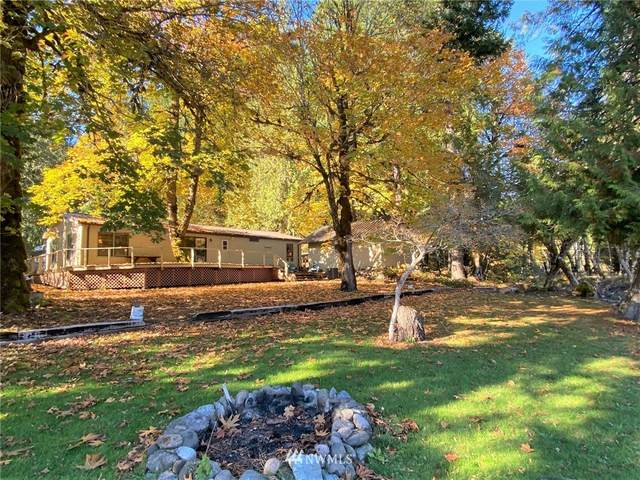 365 Craig Road, Packwood, WA 98361 (#1684564) :: TRI STAR Team | RE/MAX NW