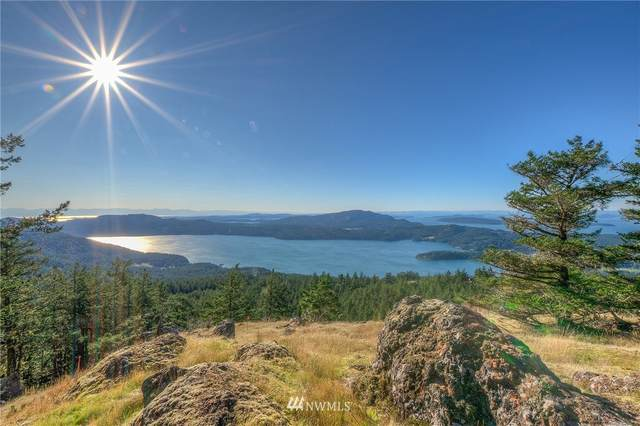 2150 Buck Mountain Road, Orcas Island, WA 98245 (#1684731) :: Icon Real Estate Group