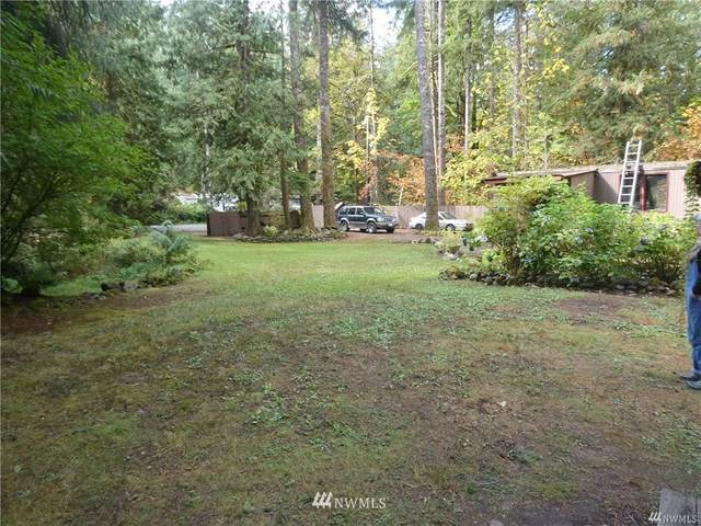 51615 Jasper Lane, Index, WA 98294 (#1685110) :: Shook Home Group