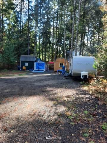 261 N Duckabush Drive, Hoodsport, WA 98548 (#1685497) :: Lucas Pinto Real Estate Group