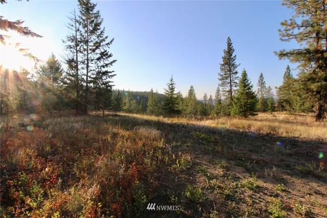0 Rail Canyon Lot #3 Road, Ford, WA 99013 (#1685560) :: M4 Real Estate Group