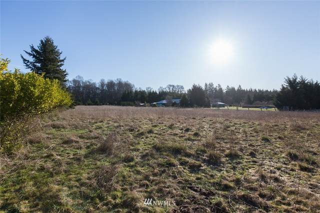 0 Grand View Drive, Sequim, WA 98382 (MLS #1685571) :: Community Real Estate Group
