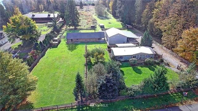 920 288th Street, Stanwood, WA 98292 (#1685744) :: Lucas Pinto Real Estate Group