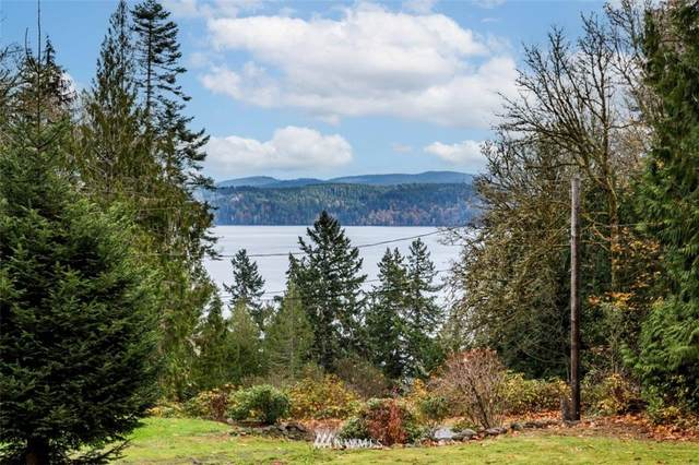 470 Forest Drive, Brinnon, WA 98320 (#1685798) :: Pacific Partners @ Greene Realty