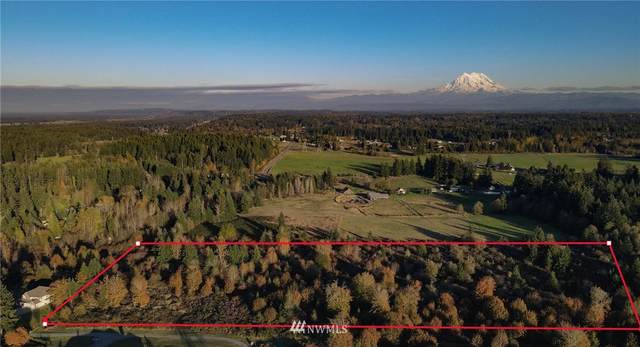 29527 14th Avenue S, Roy, WA 98580 (#1685855) :: Icon Real Estate Group