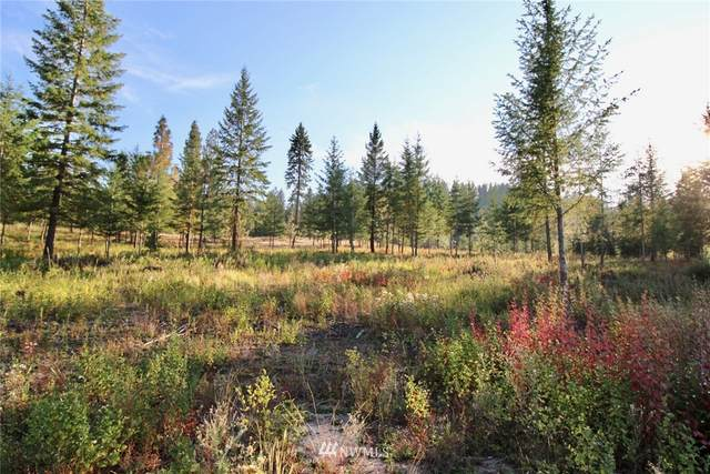 0 Rail Canyon Rd Lot 5, Ford, WA 99013 (#1685903) :: Shook Home Group