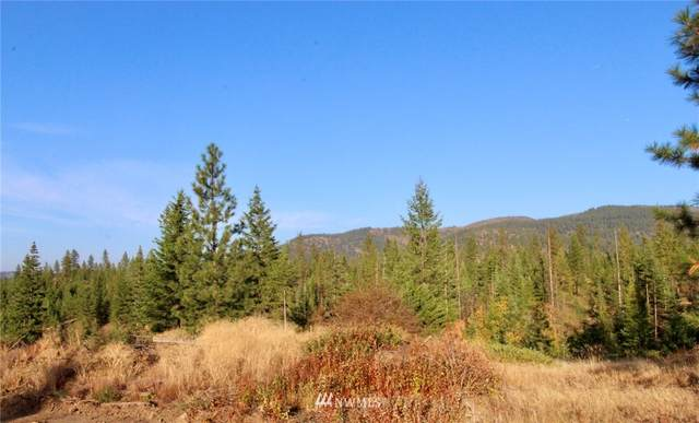 0 Rail Canyon Rd Lot 6, Ford, WA 99013 (#1685929) :: The Robinett Group