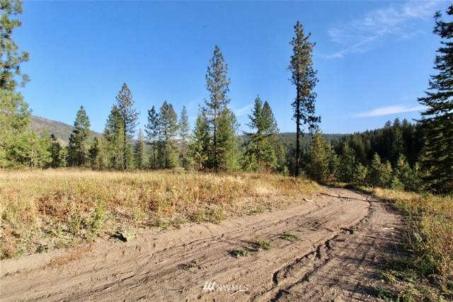 0 Rail Canyon Rd Lot 4, Ford, WA 99013 (#1685953) :: The Robinett Group
