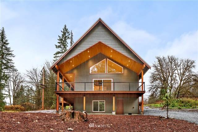 11063 Whistler Lane, Deming, WA 98244 (#1686158) :: Priority One Realty Inc.