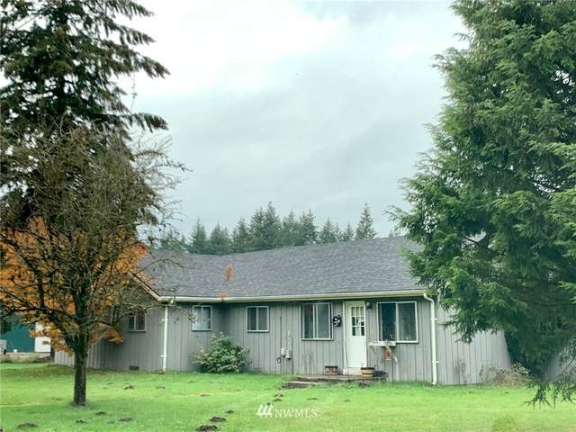 10300 School Land Road SW, Rochester, WA 98579 (#1686279) :: Priority One Realty Inc.