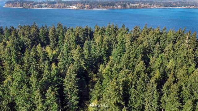 701 Lovass Road, Anderson Island, WA 98303 (#1686332) :: The Robinett Group