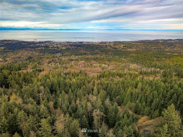 6368 S Old Mill Road, Port Angeles, WA 98362 (#1686469) :: Priority One Realty Inc.