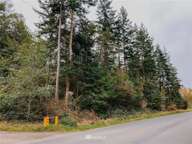 13 N Jacob Miller Road, Port Townsend, WA 98368 (#1687181) :: Priority One Realty Inc.