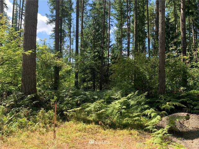 318 S Toutle Road, Toutle, WA 98649 (#1687675) :: Priority One Realty Inc.