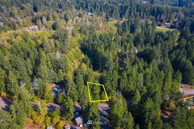 491 N Fairway Drive W, Hoodsport, WA 98548 (#1687701) :: Lucas Pinto Real Estate Group