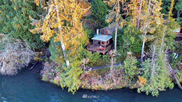 27 Lake Lane, Quinault, WA 98575 (#1687914) :: NW Home Experts