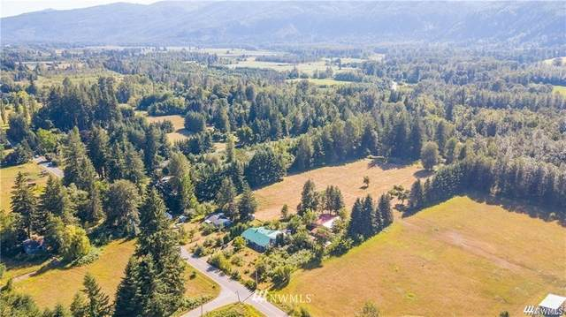 3993 Nelson Road, Deming, WA 98244 (#1688051) :: M4 Real Estate Group