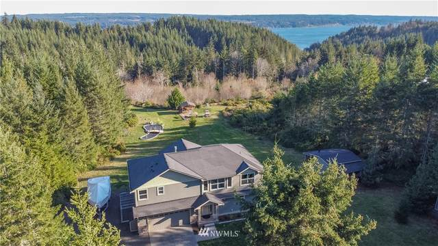 117 Glacier Ridge Road, Quilcene, WA 98376 (#1688078) :: Lucas Pinto Real Estate Group