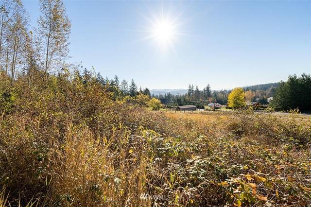 3739 Toad Lake Road, Bellingham, WA 98226 (#1688100) :: The Robinett Group