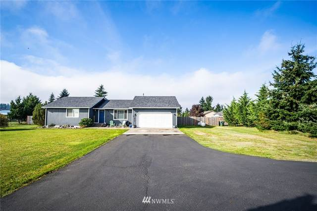 9317 181st Way SW, Rochester, WA 98579 (#1688511) :: TRI STAR Team | RE/MAX NW