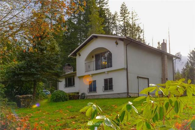 12716 Wright Bliss Road NW, Gig Harbor, WA 98329 (#1688842) :: Hauer Home Team