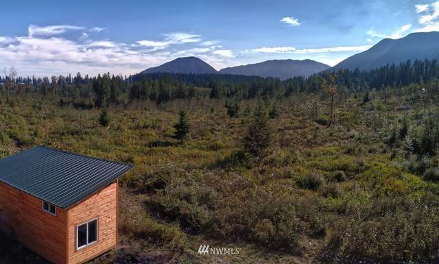 2660 Wildwood Road, Quilcene, WA 98376 (#1688925) :: Priority One Realty Inc.