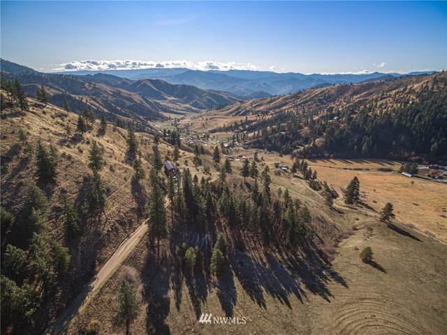 0 Nahahum Canyon Road, Cashmere, WA 98815 (#1689426) :: The Robinett Group