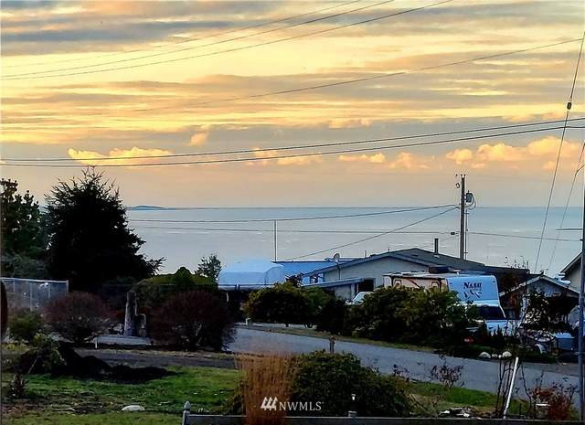 101 Ridge Drive, Port Townsend, WA 98368 (#1689616) :: NW Home Experts