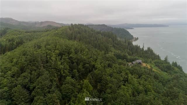 1 Point Ellice, Chinook, WA 98614 (#1690074) :: Neighborhood Real Estate Group
