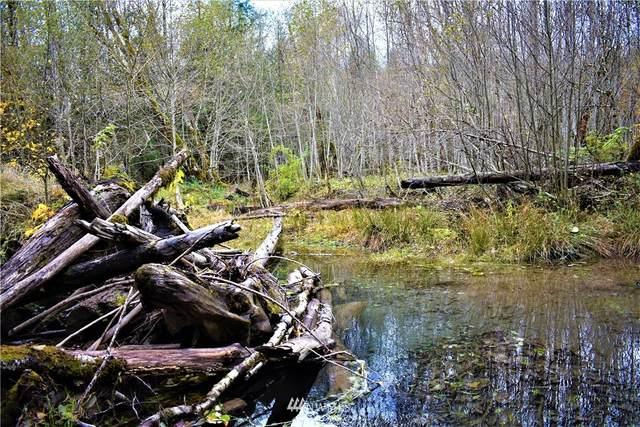 155 Eagle Peak Drive, Packwood, WA 98361 (#1690137) :: The Robinett Group