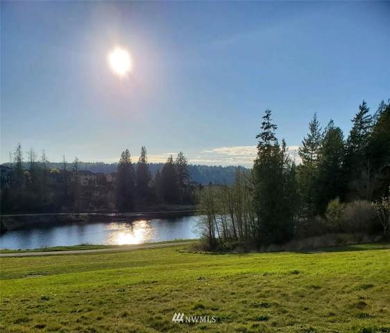 24099 Bass Pro Place, Mount Vernon, WA 98274 (#1690302) :: Hauer Home Team