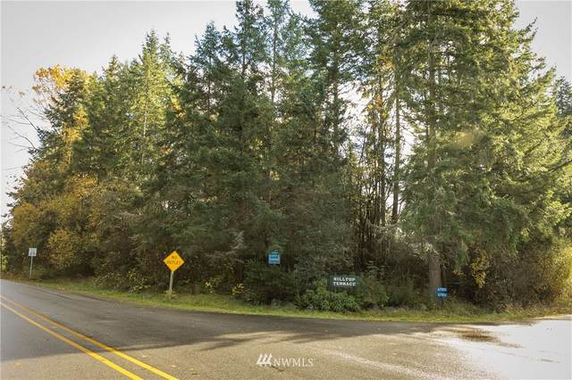 0 Holst Road, Clinton, WA 98236 (#1691401) :: The Robinett Group