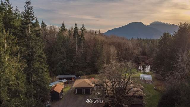 292465 Highway 101, Quilcene, WA 98376 (#1691848) :: Better Properties Real Estate