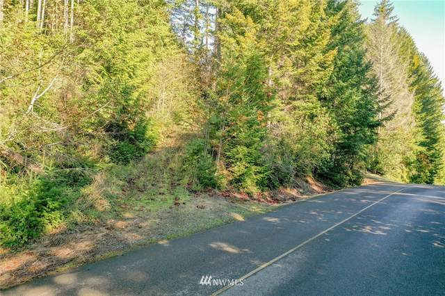 120 N Colony Surf Dr., Lilliwaup, WA 98555 (MLS #1691904) :: Community Real Estate Group