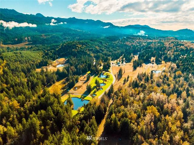 16377 Taylor Road, Mount Vernon, WA 98273 (#1691940) :: The Shiflett Group