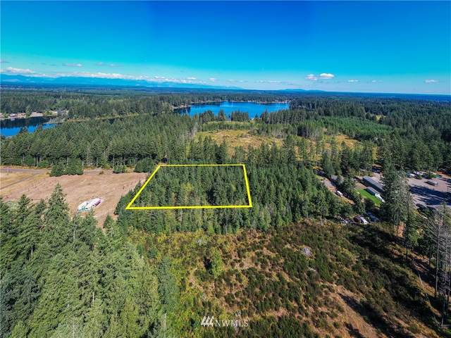 0 E Clay Road, Shelton, WA 98584 (#1691977) :: The Robinett Group