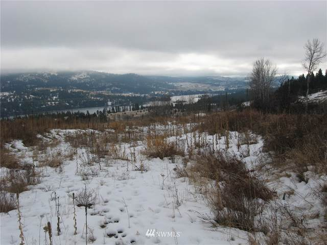 2 Ridge View Drive, Republic, WA 99166 (#1692095) :: Priority One Realty Inc.