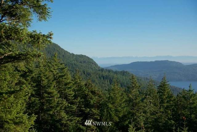 0 Buck Mountain Road, Orcas Island, WA 98279 (#1693091) :: The Royston Team