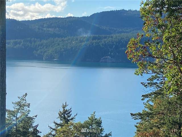 0 Palisades Drive, Orcas Island, WA 98245 (#1693441) :: Lucas Pinto Real Estate Group