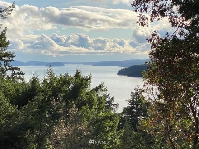 0 Palisades Drive, Orcas Island, WA 98245 (#1693441) :: The Shiflett Group