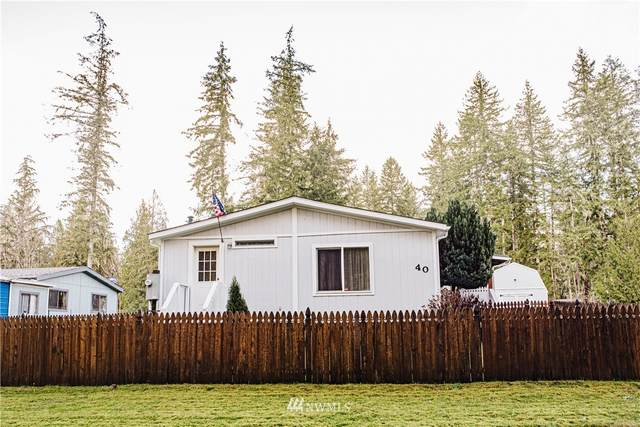 40 W Satko Glen Rd, Elma, WA 98541 (#1694058) :: Priority One Realty Inc.