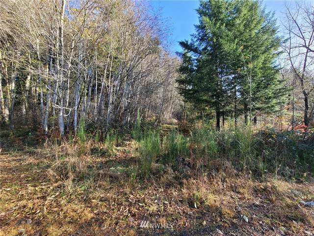 690 N Summit Road, McCleary, WA 98557 (#1694787) :: Canterwood Real Estate Team