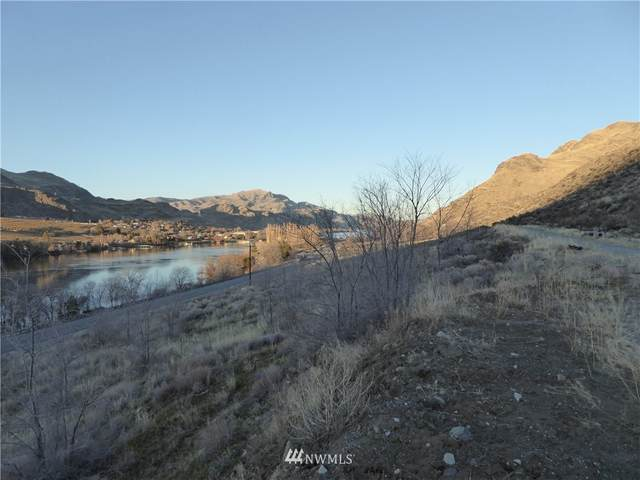 10003 Us 97 Hwy, Orondo, WA 98433 (#1695510) :: Mike & Sandi Nelson Real Estate