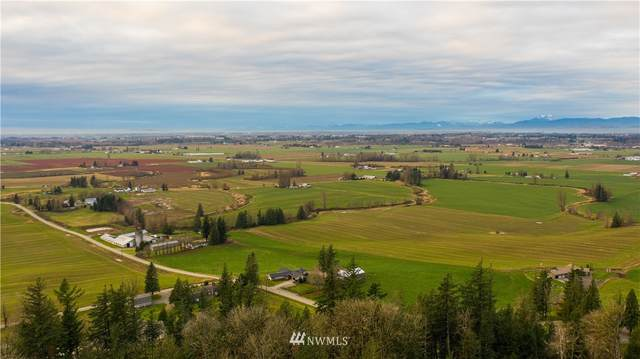 4135 Kamphouse Drive, Sumas, WA 98295 (#1695517) :: Keller Williams Realty