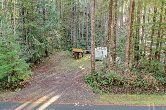 240 N Dow Creek Drive, Hoodsport, WA 98548 (#1695705) :: Keller Williams Realty