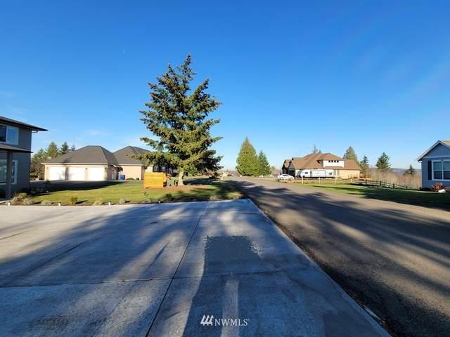 131 Saley Lane, Centralia, WA 98531 (MLS #1695950) :: Community Real Estate Group
